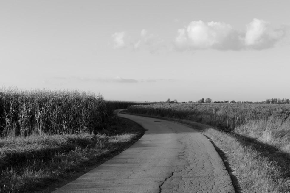 zone landscape